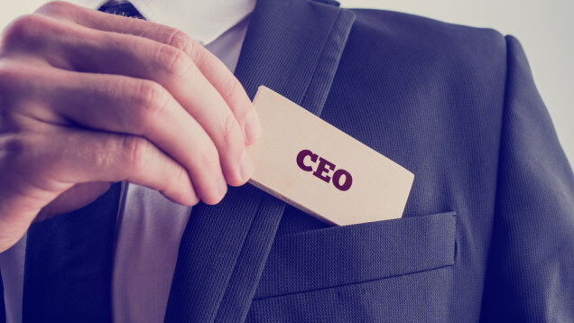 types of ceos