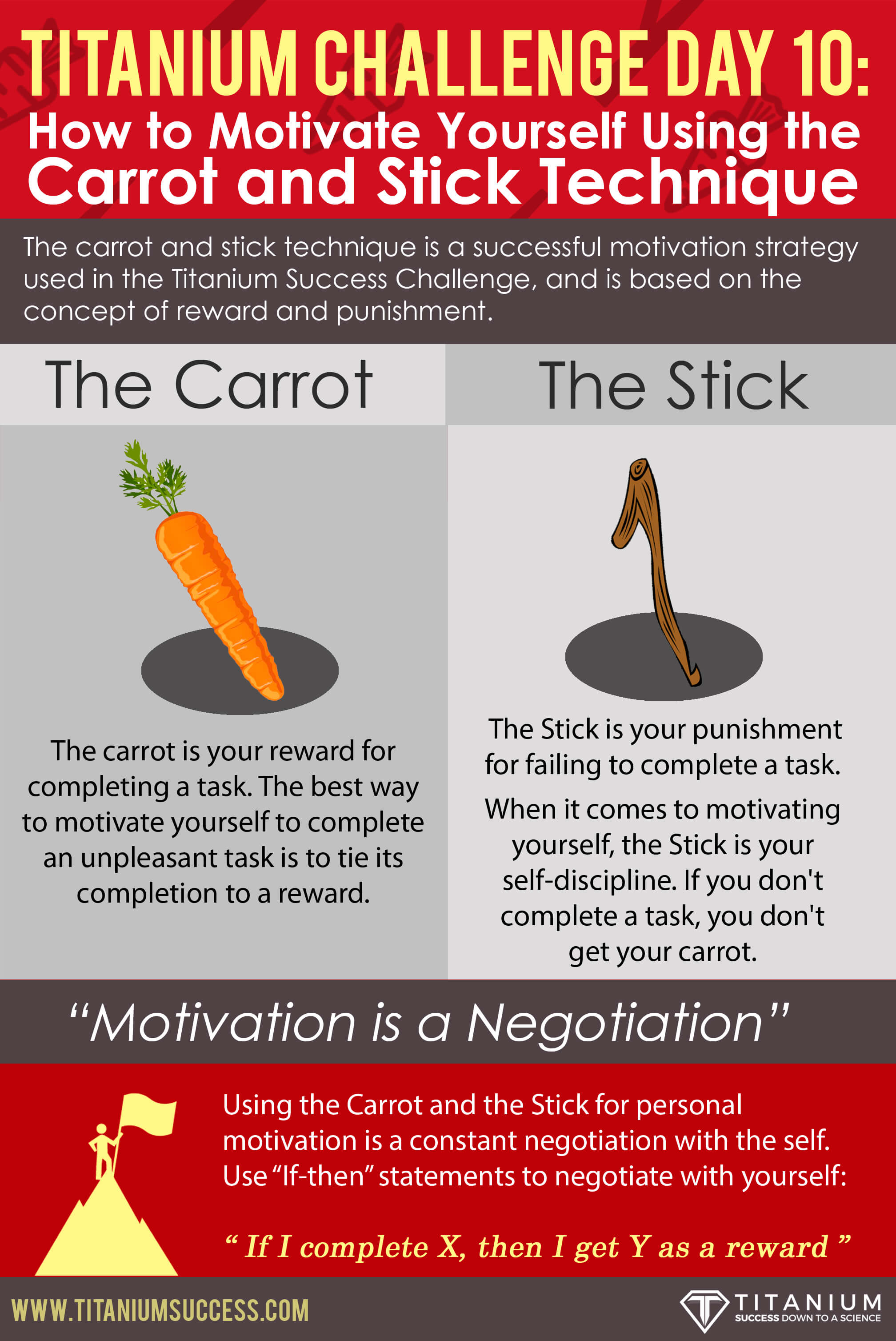 Carrot and Stick Technique Motivation Infographic - TS